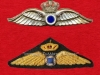 Διακριτικά ιπταμένων χειριστών της Αεροπορίας Στρατού περιόδου 1960-1973.