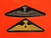 Νυν διακριτικά ιπτάμενου χειριστού, και ιπτάμενου μηχανικού της Αεροπορίας Στρατού