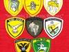 Διακριτικά Μονάδων-Σχηματισμών του Κυπριακού Στρατού