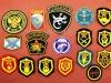 Στρατιωτικά διακριτικά της πρώην ΕΣΣΔ και της νυν Ρωσίας
