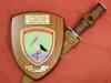 Απονομή τιμητικής αναμνηστικής πλακέτας την 16-03-2016 από την 9η ΜΠ Ταξιαρχία και του Ελληνικού μαχαιριού ''commandos''